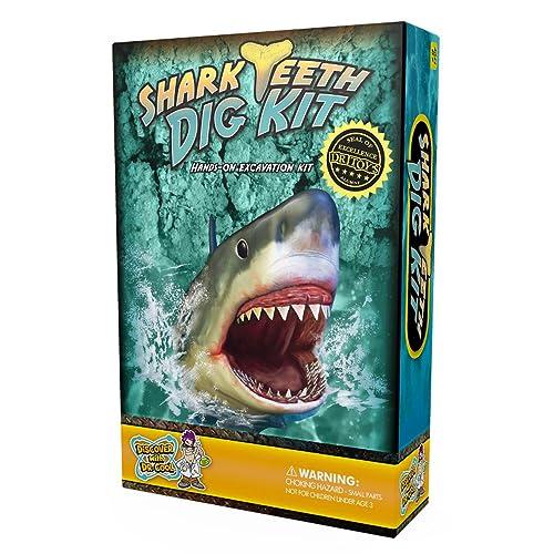 Shark Gifts For Kids Amazon Com