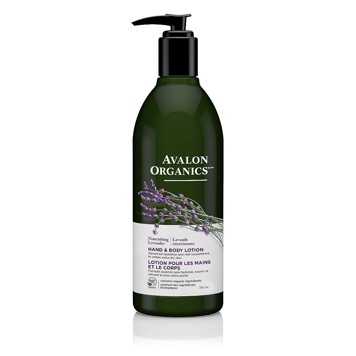 メドレーぬいぐるみナイトスポットAvalon Lavender Hand & Body Lotion 360 ml (並行輸入品)