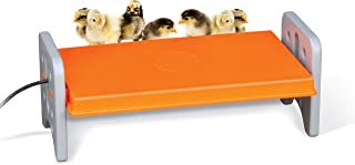 K&H PET PRODUCTS 100542463 Thermo-Poultry Brooder for Newly Hatched Chicks and Ducklings, Large 11.5 X 20 X 8 Inches, Gray/Orange