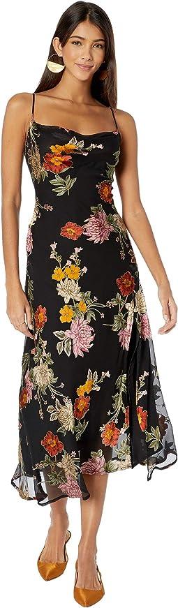 Black Multi/Floral