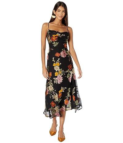 ASTR the Label Gaia Dress (Black Multi/Floral) Women