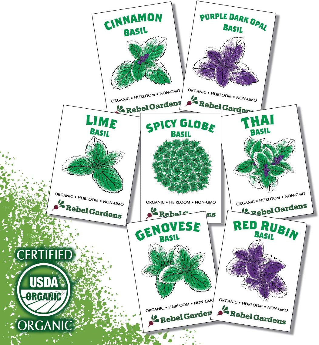 Organic Basil Seeds - Set of 7 Heirloom Non-GMO Seed Varieties - Thai, Genovese, Cinnamon, Spicy Globe, Purple Opal, Red Rubin, and Lime