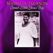 Best music for sweet little jesus boy Reviews