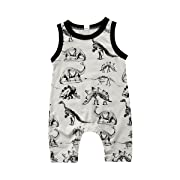 Toddler Infant Baby Boy Dinosaur Sleeveless Romper Jumpsuit Animal Outfit Summer Clothes (Gray, 0-6 Months)