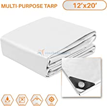 TANG Sunshades Depot 12 x 20 Feet Heavy Duty 10 Mil White Cover Tent Shelter Camping Tarpaulin Multi Purpose Waterproof Poly Tarp Cover Reinforced Rip-Stop with Grommets