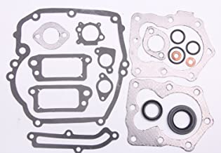 BH-Motor New 590508 Engine Gasket Set for Briggs & Stratton 794307, 497316
