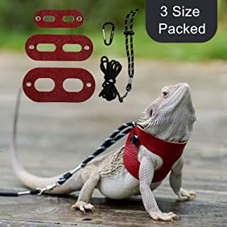 Best bearded dragon collar Reviews