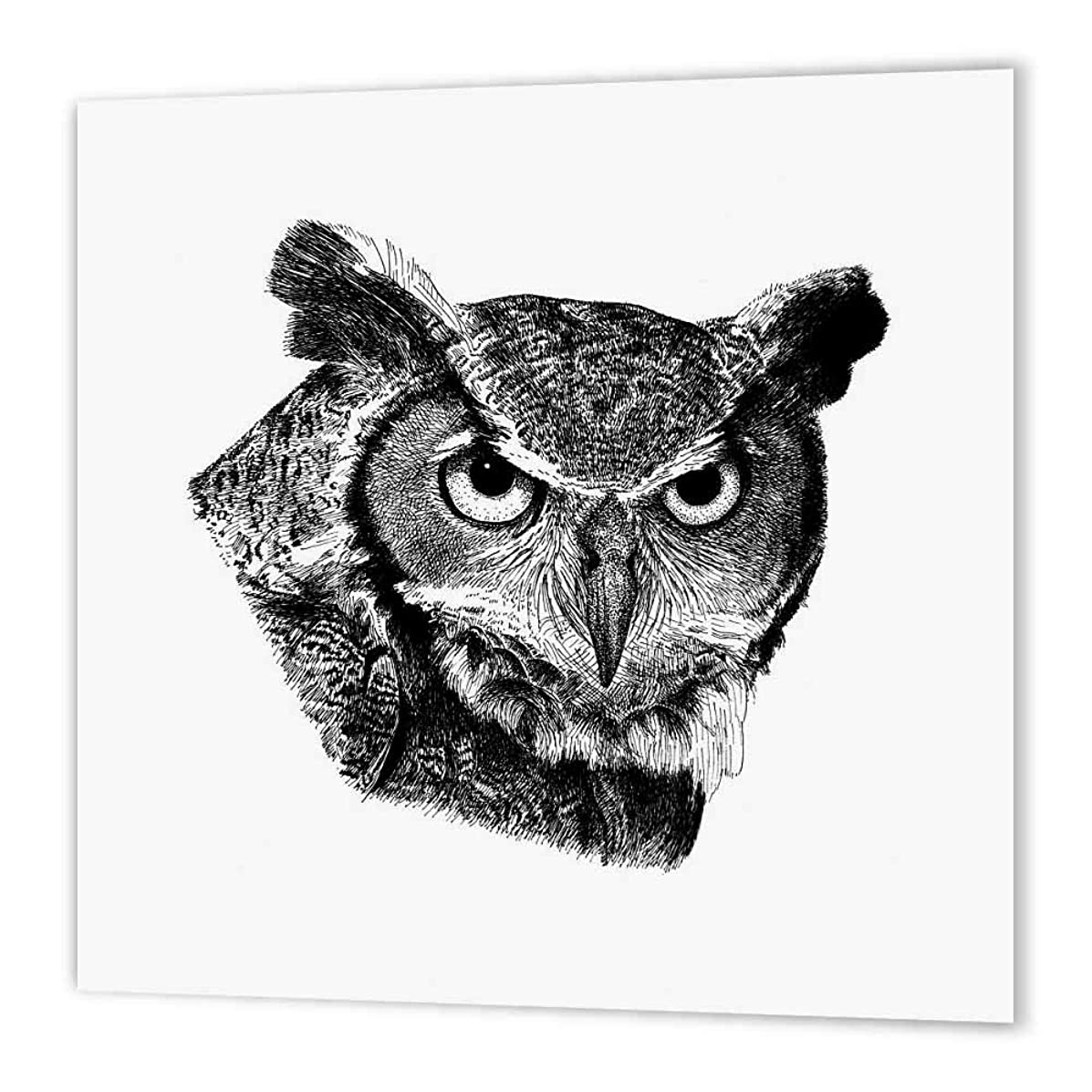 3dRose ht_149788_1 Horned Owl Iron on Heat Transfer Paper for White Material, 8 by 8