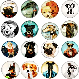 Best dog fridge magnets Reviews