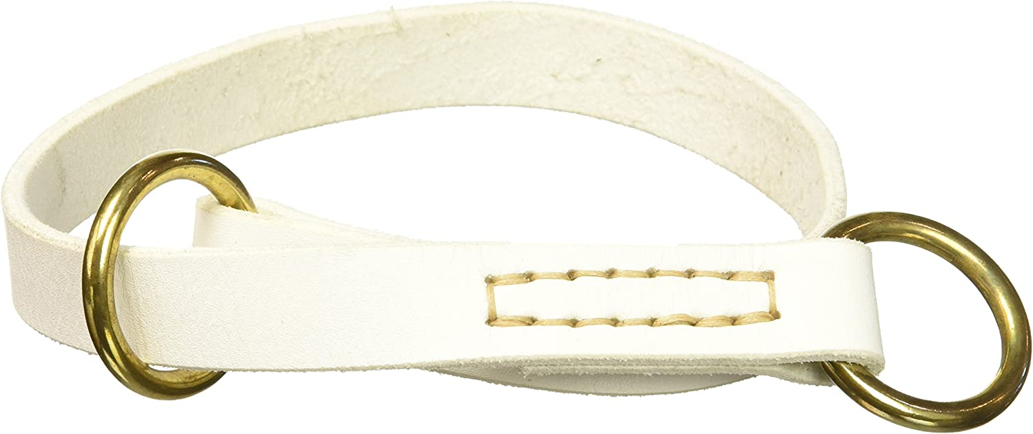 Dean & Tyler  Tranquility Leather Dog Choke Collar with Solid Brass Hardware, 22 by 3 4Inch, Fits Neck 20 to 22Inch, White