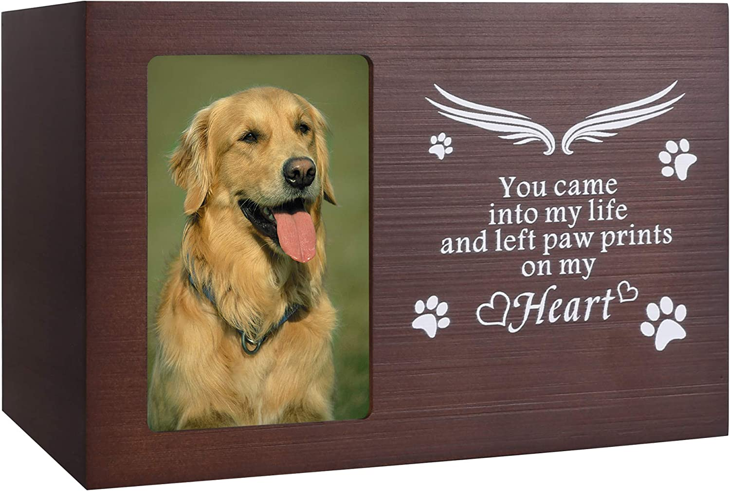 Pet Memorial Urn Free shipping on posting reviews for Ashes or Cat Dog Choice Box Memory