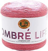 Lion Brand Ombre Life-tea Time
