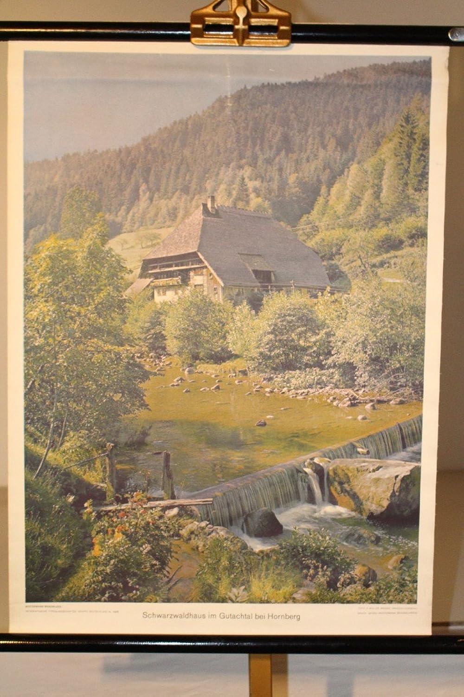 marcas en línea venta barata Vintage13 . de schulwandkarte Roll Roll Roll Tarjeta explicativo Sobre Negro Bosque casa en Gutach bei Cuerno Montaa  nuevo sádico