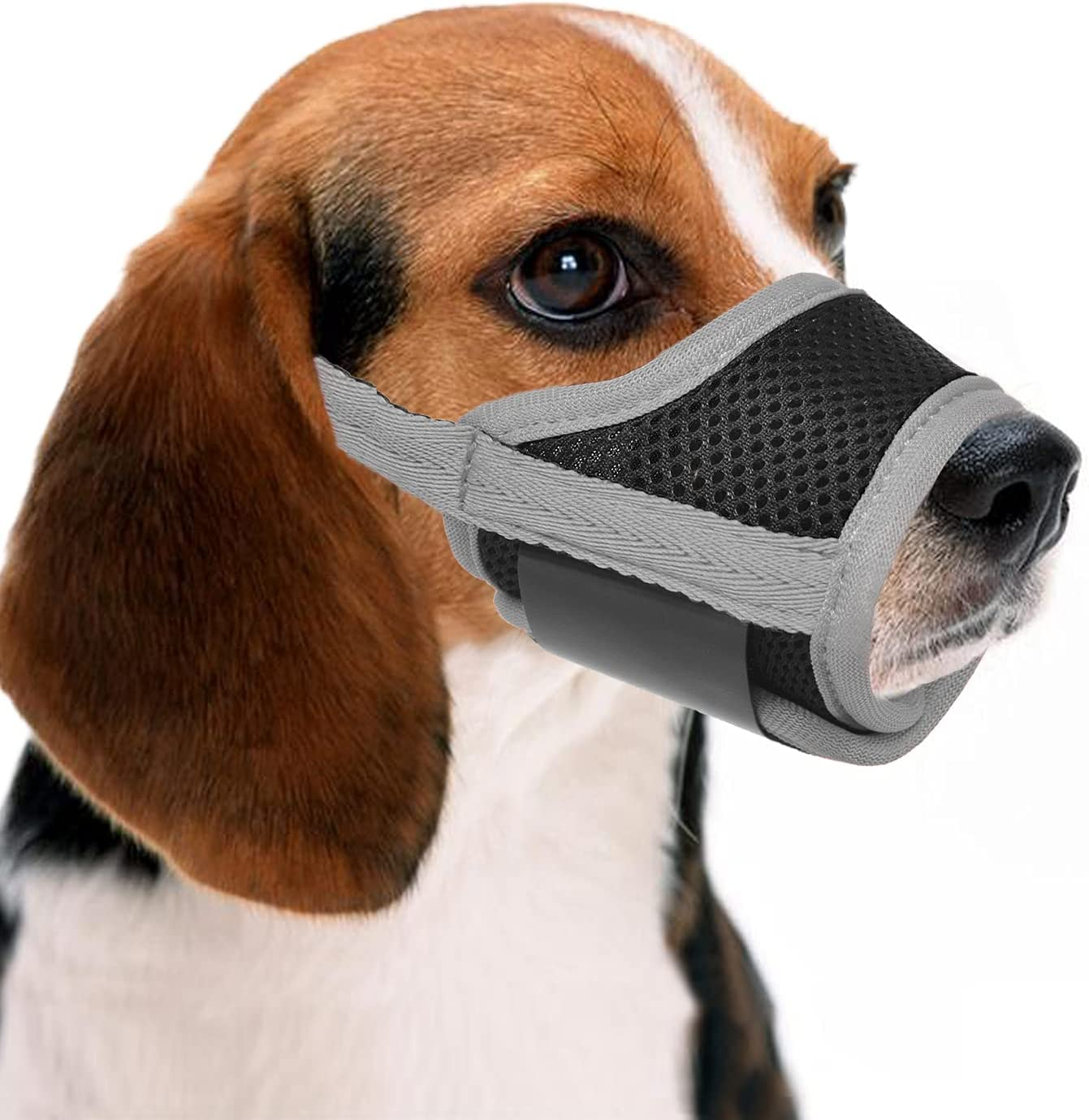 Crazy Felix Bombing new work Dog Muzzle Prevent Adjustable Now free shipping to Biting