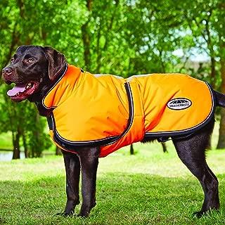 Weatherbeeta WB Reflective Parka 300D Deluxe Lite Dog Coat