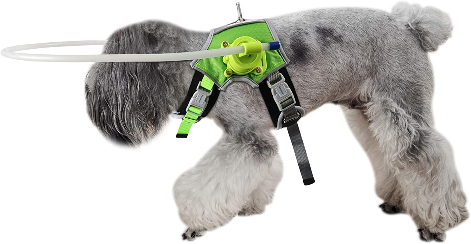 ?? Blind Dog Halo Harness, Fluorescent Dog Halo Collar and Protective Vest Ring for Visually Impaired Pets to Avoid Injury (M)