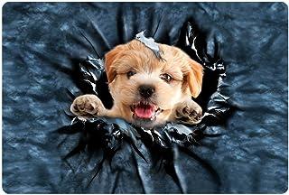 Para U diseños Bienvenido a casa diseño de gato y perro impresión Felpudo alfombra dormitorio entrada oficina antideslizante Mat