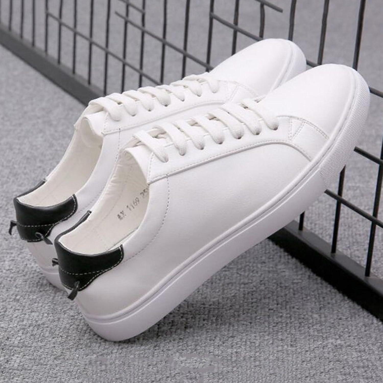 Men's shoes Feifei Spring and Autumn Leisure Fashion Lace-up Breathable Plate shoes 2 Colours (color   02, Size   EU40 UK7 CN41)