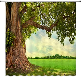 BCNEW Tree Shower Curtain Decor Banyan Green Meadow Landscape Bathroom Curtain Polyester Fabric Machine  Washable  with Hooks 70x70 Inches