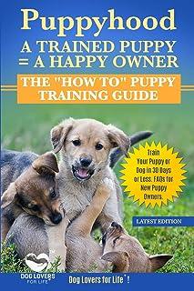 Dog Training Nashville Tn