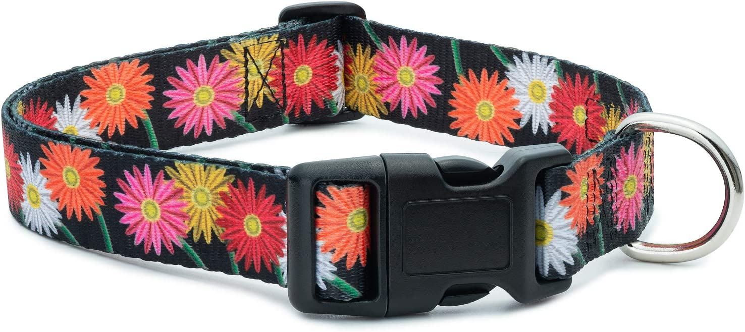 Floral Flower Collar 70% OFF Outlet Dog Columbus Mall
