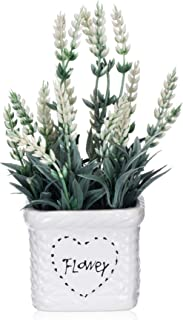 YAPA Potted Lavender Flowers -Small Artificial Plants - Fake Flower with White Ceramic Vase for Home, Party & Wedding Décor