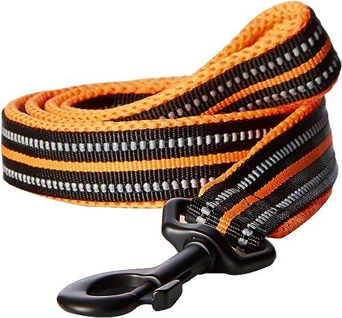PetsUp Dog Leash for Small Medium Large Dogs (2.5cm Wide 110cm Long, Reflective Leash- Orange)