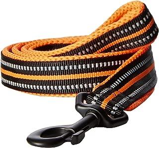 PetsUp Dog Leash for Small Medium Large Dogs (2.5cm Wide 200cm Long, Reflective Leash- Orange)