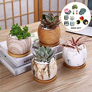 WALTSOM Succulent Plant Pot, Set of 4 Mini Marbling Ceramic Flower Pot with Bamboo Tray, Cactus Planters with Hole and Drain Hole and Miniature Ornaments, Plants Not Included