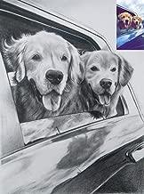 BookMyPainting Handmade Pet Portrait Charcoal Sketch,Photo to Sketch,Custom Portrait | Gifts for Wedding,Birthday,Anniversary,Girlfriend,Boyfriend