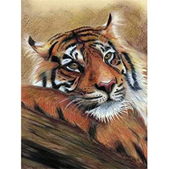 Frameless Diy 5D Diamond Painting by Number Kit for Adult Tigers Full Drill Diamond Kit Home Wall Decor-7.9X9.8