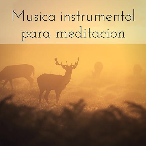 Musica instrumental para meditacion - Sonidos de la ...