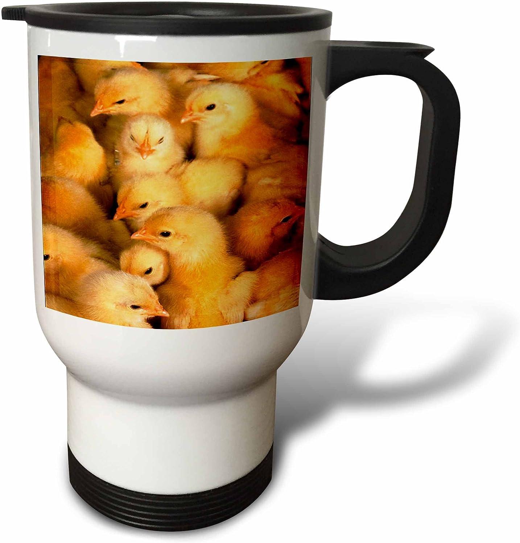 3dRose Sacramento Mall Baby Chicks 14-Ounce Max 76% OFF Travel Mug