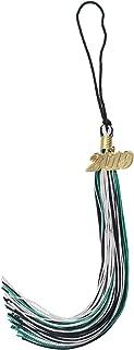 GradPlaza Graduation Tassel with 2019 Gold Year Charm Mix Three Colors