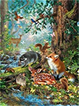 Paint by Numbers Kits DIY Oil Painting Home Decor Wall Value Gift - Animals in The Forest 16X20 Inch (Frame)