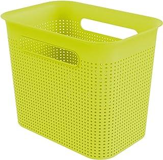 Rotho Brisen Boîte de Rangement Etroite de 7L avec 2 Poignées, Plastique (PP) sans BPA, Vert, 7L (26,2 x 18,0 x 21,1 cm)