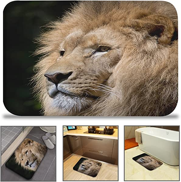 QiyI Bath Mat Rug Super Soft Non Slip Machine Washable Quickly Drying Antibacterial For Office Door Mat Kitchen Dining Living Hallway Bathroom 16 W X 24 L 40 X 60 Cm Pensive King Lion