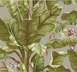 York Wallcoverings Tropics Banana Leaf Removable Wallpaper, Grey, Light Yellow/Green, Dark Brown, Purple