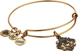 Alex and Ani - Because I Love You Goddaughter II Bangle