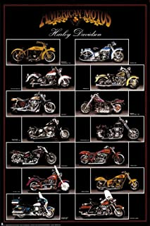 Motorcycle, Harley Davidson Poster 24 x 36in