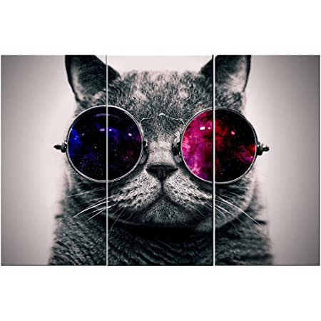 Canvas Wall Art 3 Panels Cut Cat With Glasses Wall Art Canvas Prints Animal Head Pictures Paintings On Canvas Stretched And Framed For Living Room Bedroom Home Decoration Posters Prints