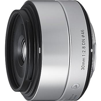 Sigma 30mm F2.8 EX DN Art (Silver) for Sony SE