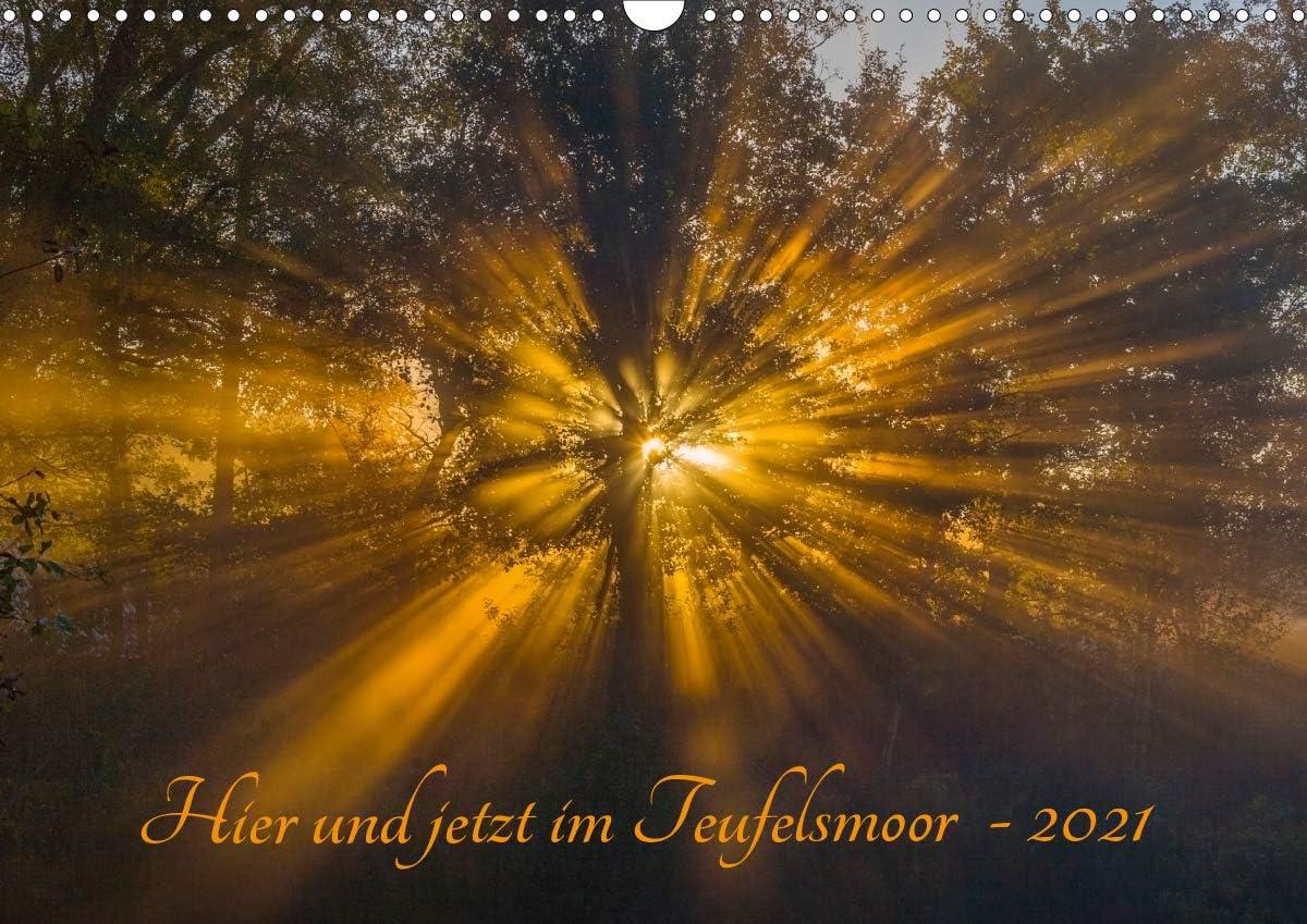 [Alternative dealer] Hier und jetzt im Teufelsmoor Super sale period limited - A3 Wandkalender 2021 DIN q
