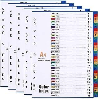 Intercalaires A4 en plastique 31 parties avec 11 trous renforcés et liste de contenu, intercalaires pré-imprimés multicolores