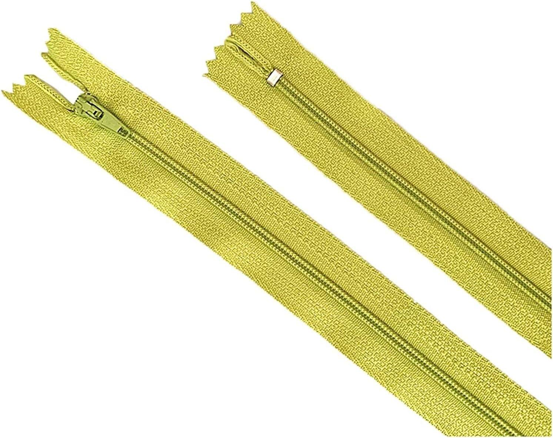 UIZSDIUZ Zipper 10Pcs 10-60 cm Nylon Coil Zippers Tailor Craft C