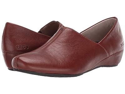 Taos Footwear Scheme (Hazelnut) Women