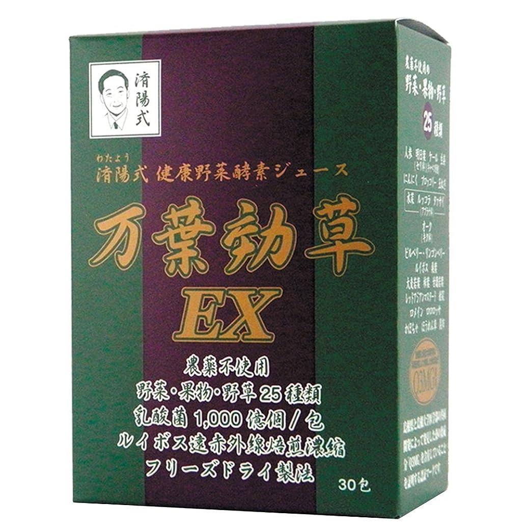 自宅で副カップルAIGエム 済陽式 健康野菜酵素ジュース 万葉効草EX