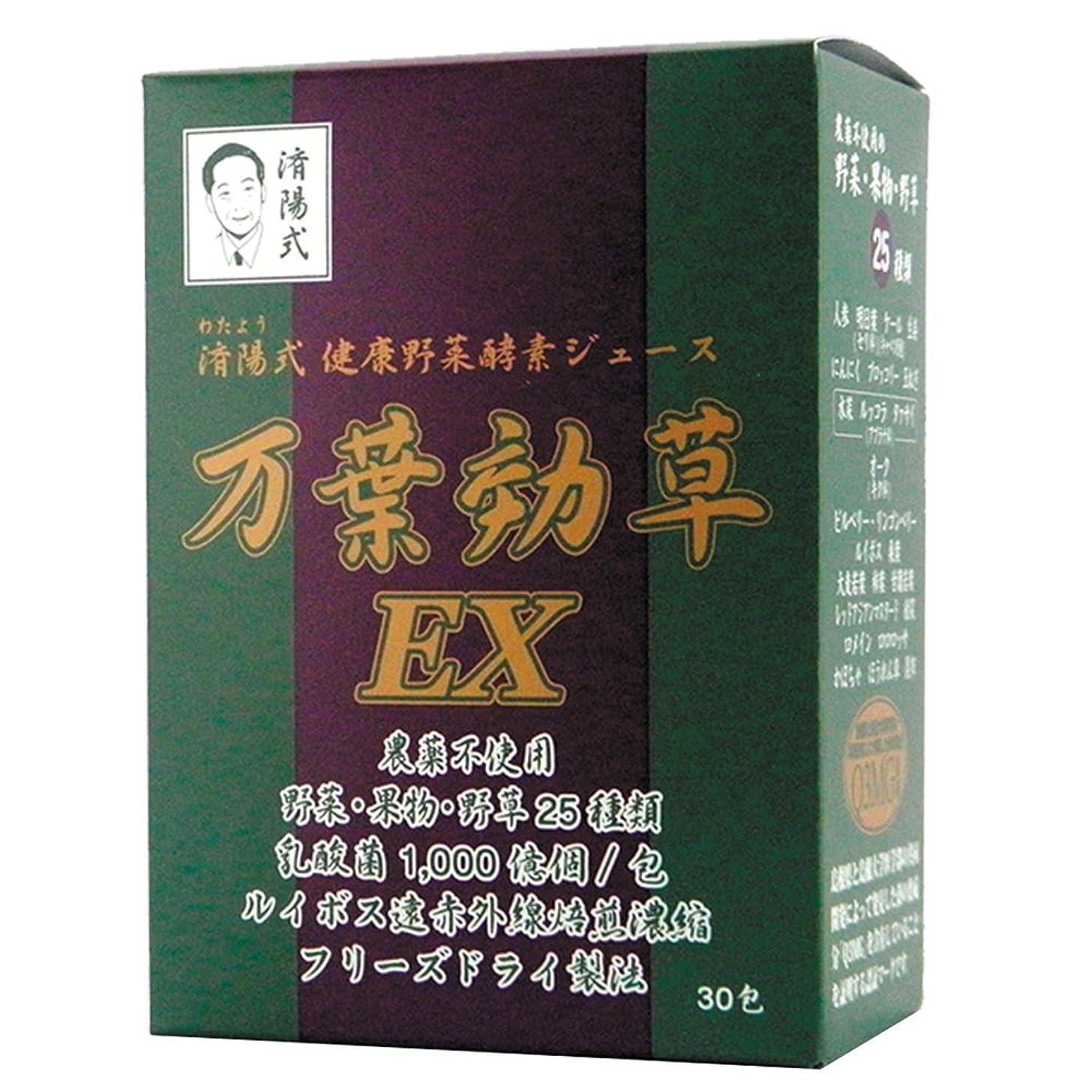 頑固な鹿電話するAIGエム 済陽式 健康野菜酵素ジュース 万葉効草EX