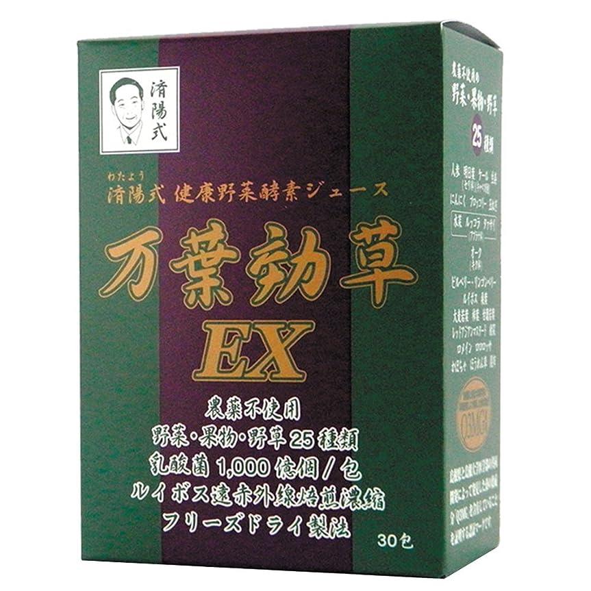 デッド飲食店尊厳AIGエム 済陽式 健康野菜酵素ジュース 万葉効草EX