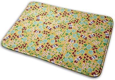 Butterfly Aqua Carpet Non-Slip Welcome Front Doormat Entryway Carpet Washable Outdoor Indoor Mat Room Rug 15.7 X 23.6 inch